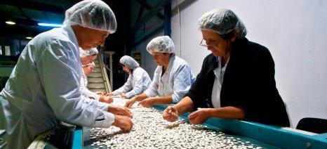 Από Ιούνιο αιτήσεις υποστήριξης επιχειρήσεων σε λιγότερο ανεπτυγμένες περιοχές
