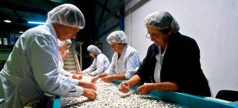 Τον Ιούνιο η προκήρυξη για την «Επιχειρηματικότητα Πολύ Μικρών και Μικρών Επιχειρήσεων»