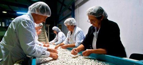 Έως την 1η Ιουλίου αιτήσεις ενίσχυσης από το καθεστώς «Γενική Επιχειρηματικότητα» του αναπτυξιακού