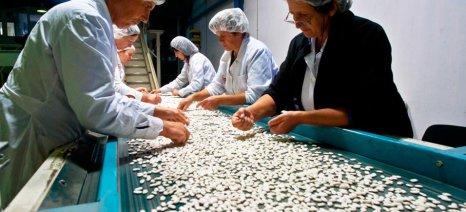 Σύντομα στον εξωδικαστικό μηχανισμό συνεταιρισμοί και επιχειρήσεις με χρέη έως 300.000 ευρώ