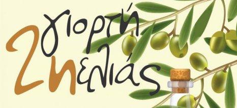 Στις 28 Σεπτεμβρίου η 2η Γιορτή Ελιάς Δρυμού Βόνιτσας