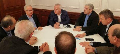 Αποστόλου: Τα προγράμματα προώθησης των ελληνικών κρασιών πρέπει να πιάσουν τόπο
