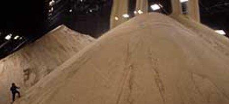 Ιδιαίτερα αρνητική η ελεύθερη αγορά για τον ευρωπαϊκό τομέα της ζάχαρης