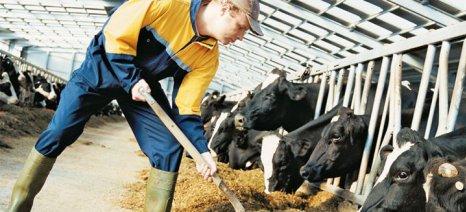 Χαμηλή η αυτάρκεια της Ε.Ε. σε υψηλής ποιότητας πρωτεϊνούχες ζωοτροφές