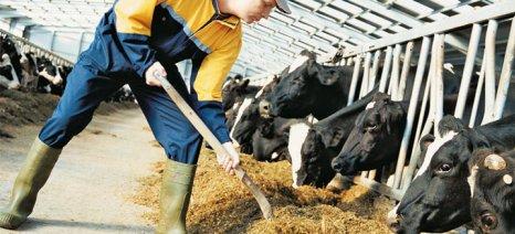 Σε διαβούλευση από την EFSA οι χλωριωμένες παραφίνες σε τρόφιμα και ζωοτροφές