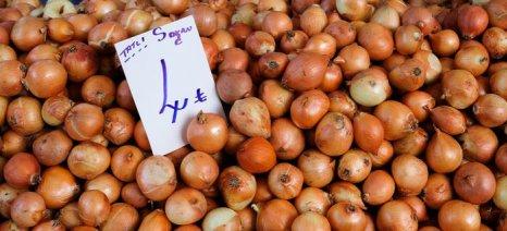Η τιμή των κρεμμυδιών στριμώχνει τον Ερντογάν