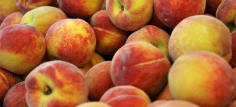 Τεχνολογίες τροποποιημένης ατμόσφαιρας για παράταση στη διάθεση φρούτων