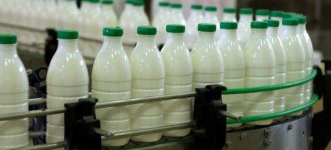 Άμεση αναγραφή της χώρας προέλευσης στο γάλα ζητούν οι αγελαδοτρόφοι