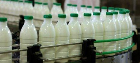 Νομοθετική παρέμβαση για συμφωνητικά με συγκεκριμένη τιμή γάλακτος ζητούν κτηνοτροφικοί σύλλογοι