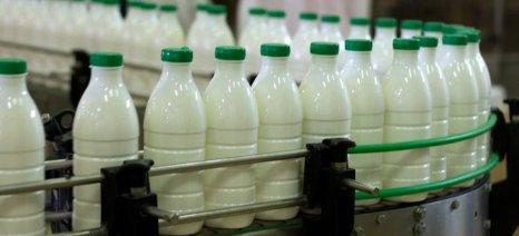 Νέες διευκρινίσεις για την σήμανση γαλακτοκομικών προϊόντων από ελληνικό γάλα