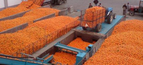 Στο 24% ο φορολογικός συντελεστής επιχειρήσεων, σε αναμονή τέλος επιτηδεύματος και φορολογία αγροτών