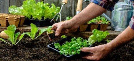 Παράταση έως 27 Μαΐου για ανακλήσεις τροποποιήσεις στις βιολογικές καλλιέργειες