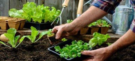 """Έως τις 14/6 ενστάσεις των αξιολογηθέντων για τις """"Βιολογικές Καλλιέργειες"""""""