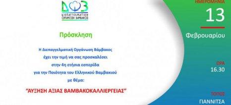 """Το απόγευμα στις 16.30 η εκδήλωση της ΔΟΒ για την """"Αύξηση αξίας της βαμβακοκαλλιέργειας"""" στα Γιαννιτσά"""