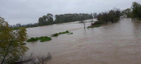 Κλιμάκιο του ΕΛΓΑ θα επισκεφθεί αύριο τις πλημμυρισμένες περιοχές της Βοιωτίας - απολογισμός ζημιών από την αντιπεριφερειάρχη