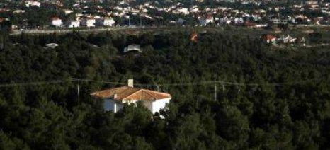 ΣτΕ: Κατεδάφιση για τα αυθαίρετα μέσα σε δάσος