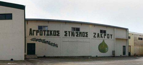 Στα 3,92 ευρώ/κιλό η τιμή του ελαιολάδου στη δημοπρασία του Α.Σ. Ζάκρου