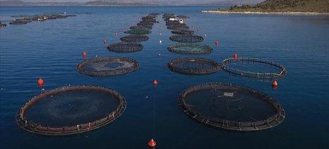 Κρατικές ενισχύσεις ήσσονος σημασίας για υδατοκαλλιέργειες πλήρωσε ο Ο.Π.Ε.Κ.Ε.Π.Ε.
