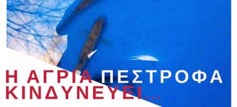 Εκδήλωση για τη διάσωση της άγριας πέστροφας από τον Υδροβιολογικό Σταθμό Πέλλας