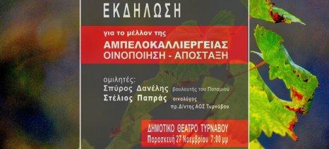 Απόψε ημερίδα για την αμπελοκαλλιέργεια στον Τύρναβο - ομιλία Δανέλλη