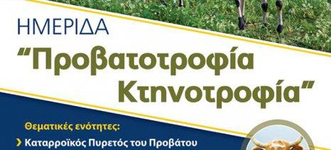 Ημερίδα για την κτηνοτροφία από τον Α.Σ. Μεσολογγίου-Ναυπακτίας