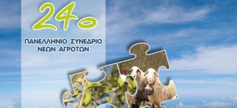 Σε ελαιοκομία και προβατοτροφία θα εστιάσει το 24ο Πανελλήνιο Συνέδριο Νέων Αγροτών στα Χανιά
