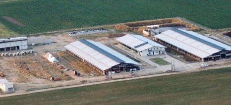 Έως τις 30 Ιουνίου η νομιμοποίηση κτηνοτροφικών εγκαταστάσεων