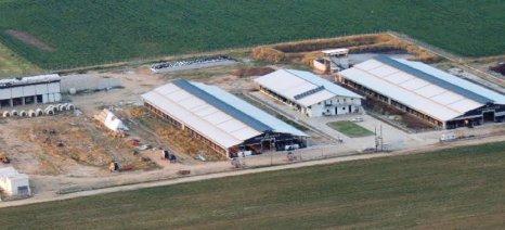 Σταυλικές εγκαταστάσεις και πτηνοτροφεία στον νέο αναπτυξιακό
