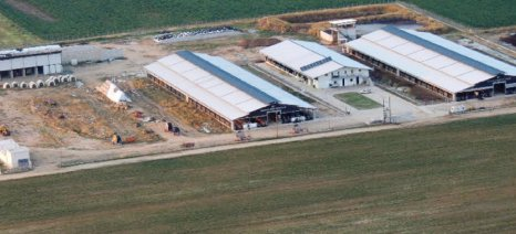 Ακατάσχετο πρώτης κατοικίας και στάβλων, καθώς και κούρεμα δανείων ζητούν οι κτηνοτρόφοι