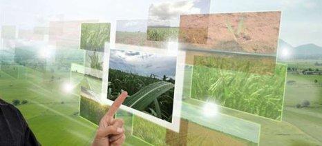 """Trophy – Τροφή Challenge"": Διαγωνισμός καινοτομίας στον τομέα της αγροδιατροφής"