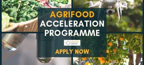 Μέχρι αύριο οι αιτήσεις για το πρόγραμμα επιχειρηματικής επιτάχυνσης στον χώρο της αγροδιατροφής του Orange Grove