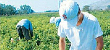 Θετικοί ρυθμοί μεταβολής αναμένονται για το αγροτικό εισόδημα