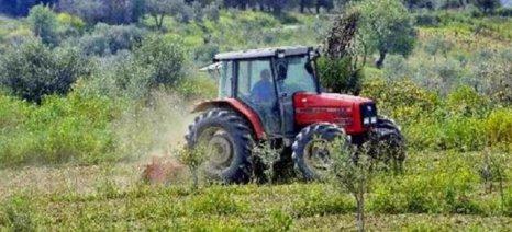 Από 15 Μαρτίου αιτήσεις για το 14χίλιαρο μικρών εκμεταλλεύσεων στην Κρήτη