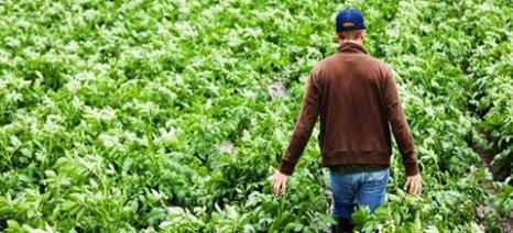 Μόνο με πρωτότυπα τιμολόγια - ή θεωρημένα  υπηρεσιακώς - η επιστροφή Φ.Π.Α. στους αγρότες του ειδικού καθεστώτος