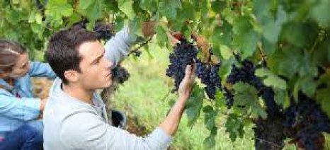 Πρόγραμμα κατάρτισης στο κέντρο «Δήμητρα» Αλμυρού για νέους αγρότες