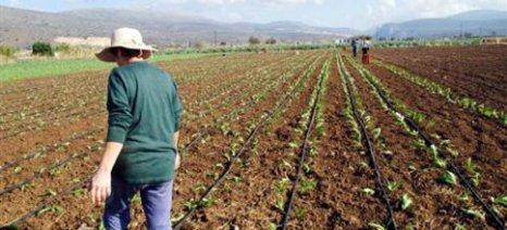 Να ενταχθούν και οι αγρότες στη ρύθμιση οφειλών προς τη ΔΕΗ ζητούν οι βουλευτές του ΣΥΡΙΖΑ