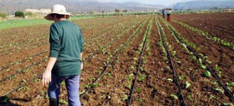 Το πλάνο του ΣΥΡΙΖΑ για την αγροτική ανάπτυξη