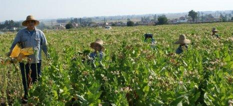 Βάσει του τελευταίου ΟΣΔΕ σε ισχύ οι αιτήσεις αγροτών για εργασία πολιτών τρίτων χωρών