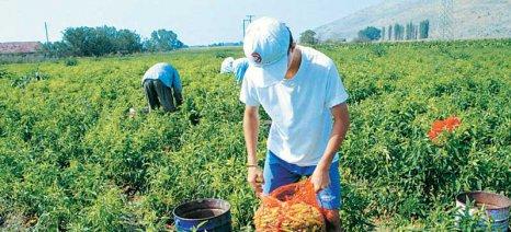Αναμένεται τροπολογία για τους νεοεισερχόμενους αγρότες που δεν «φαίνονται» στο Μητρώο, με σκοπό να επωφεληθούν του αφορολόγητου
