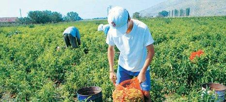 Περισσότερους πόρους για νέους αγρότες διεκδικεί η περιφέρεια Δ. Ελλάδας