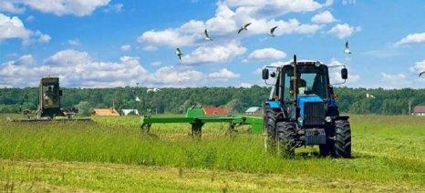 """Φ. Αραμπατζή: """"Βρέχει"""" λεφτά για την ευρωπαϊκή γεωργία και η Κυβέρνηση συνεχίζει να κρατά ομπρέλα"""