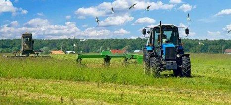 Υπό αναδιανομή 207.449 στρέμματα από το ΥΠΑΑΤ σε κατά κύριο επάγγελμα αγρότες
