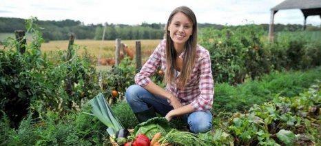 Ξεκινά η κατάρτιση δικαιούχων των προκηρύξεων της εγκατάστασης νέων γεωργών στη Λάρισα