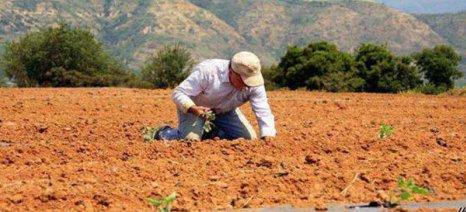 Στο πρώτο τρίμηνο του 2019 η νέα ρύθμιση για αγροτικά και επιχειρηματικά χρέη
