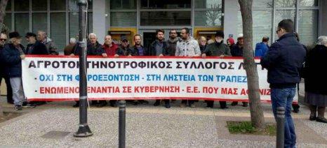 Εξορμήσεις του Αγροτοκτηνοτροφικού Συλλόγου Λαγκαδά σε Στίβο και Ζαγκλιβέρι