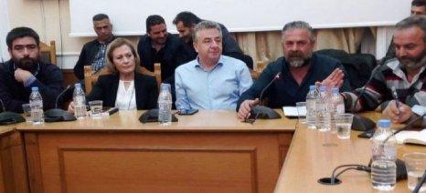 Η κλιματική αλλαγή πλήττει την ελαιοκαλλιέργεια της Κρήτης