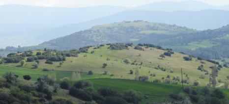 Παράταση προθεσμίας εξαγοράς δασικών εκτάσεων για γεωργική καλλιέργεια μέχρι τις 8 Αυγούστου 2020
