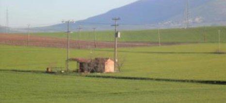 ΚΙΝΑΛ: Αντιαναπτυξιακές ανατιμήσεις ΔΕΗ και απαράδεκτες διακοπές ηλεκτροδότησης αγροτών