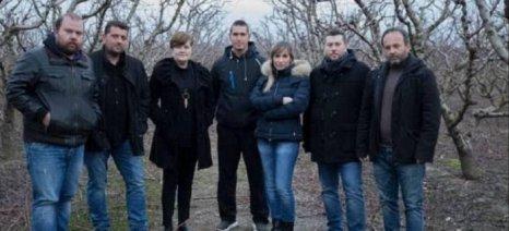 Τα φετινά προβλήματα των ροδακινοπαραγωγών εξέθεσε στον Βορίδη ο Αγροτικός Σύλλογος Ημαθίας