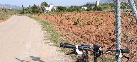 Το Συμβούλιο της Επικρατείας αποφάσισε ότι δεν είναι αρμόδιοι οι δήμοι για τη μεταφορά αγροτικών οδών